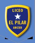Fundación El Pilar